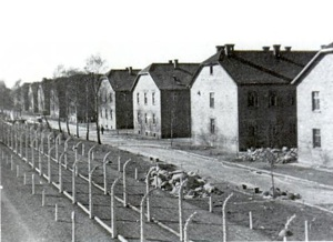 Cities looked like Auschwitz