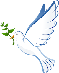 The dove returned with an olive branch