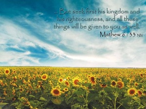 Seek first His Kingdom